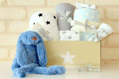 ארנב מפנק מתנה לתינוק